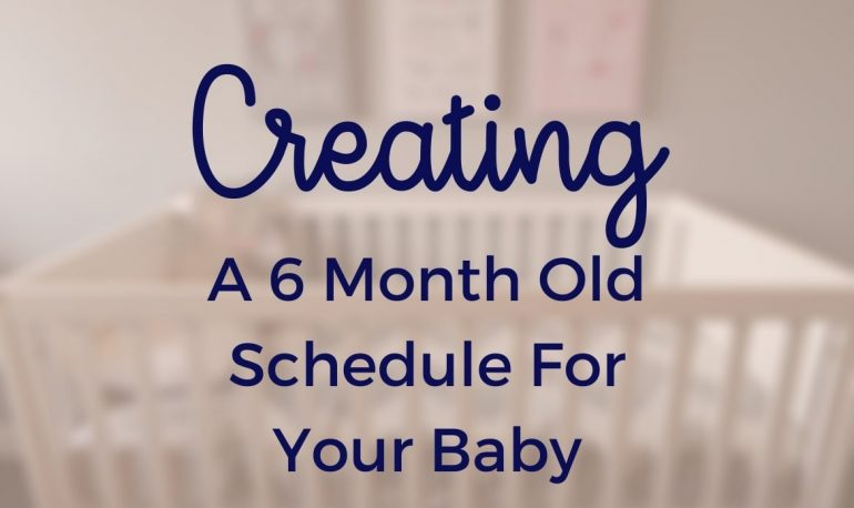 6 Month Old Schedule